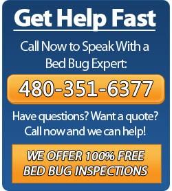 Call Phoenix Bed Bug Expert - 480-351-6377