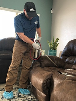 Mesa bed bug chemical treatment by Phoenix Bed Bug Expert